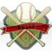 Baseball & Softball Rule Books HD