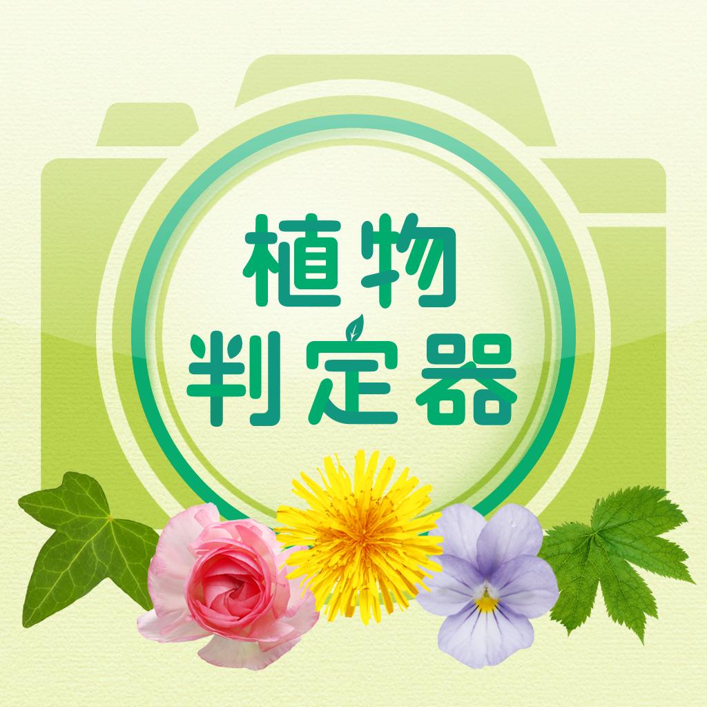 植物判定器